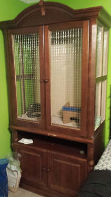 Custom Chinchilla Cage