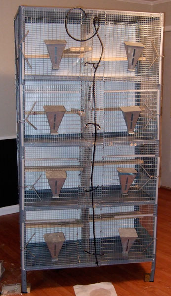 Chinchilla breeding cages