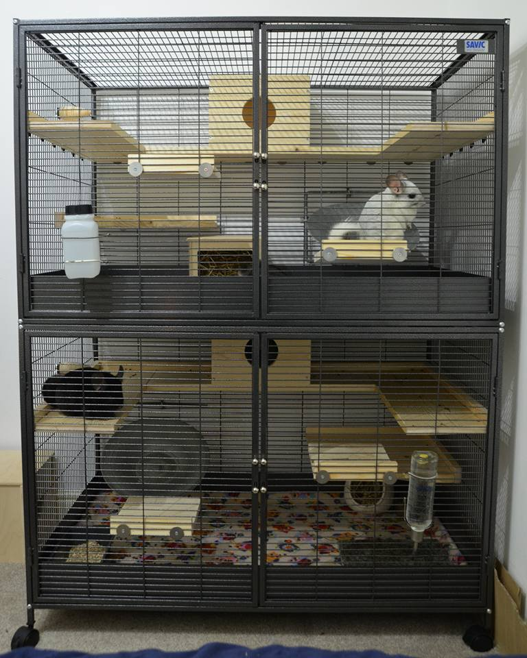 Critter Nation Chinchilla Cage
